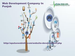 Php Web Development Services- Epulsewebinfo.com- Web Development Company In Punjab-Mobile Web Application Development