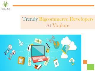 Trendy Bigcommerce Developers - Vxplore Technologies