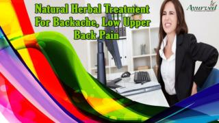 Natural Herbal Treatment For Backache, Low Upper Back Pain