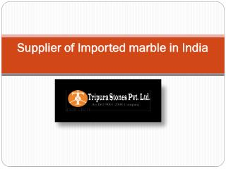 Supplier of Imported marble in India