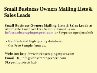 Small Business Owners Mailing Lists & Sales Leads