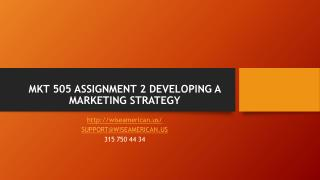MKT 505 ASSIGNMENT 2 DEVELOPING A MARKETING STRATEGY