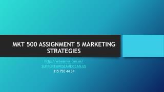 MKT 500 ASSIGNMENT 5 MARKETING STRATEGIES
