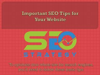 Important SEO Tips for Your Website
