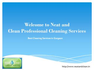 Professional Cleaning Services in Gurgaon