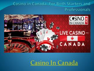 Casino in Canada: For Both Starters and Professionals