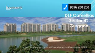 DLF Camellias in Sector 42, Gurgaon - BuyProperty