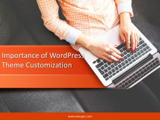 Explore the Importance of WordPress Theme Customization