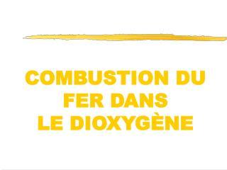 COMBUSTION DU FER DANS  LE DIOXYG NE
