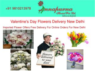 Amaryllis wholesale flowers in east delhi