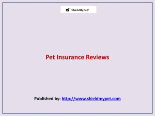 Shield My Pet-Pet Insurance Reviews