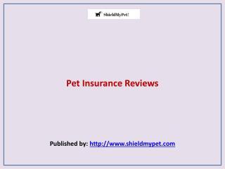 Shield My Pet-Pet Insurance Reviews