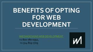 Benefits opting for Web Development