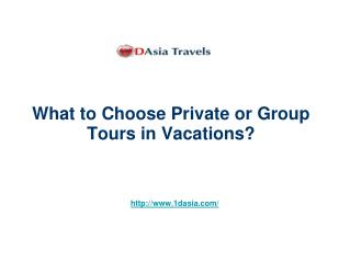 What to Choose Private or Group Tours in Vacations?