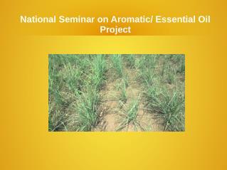 Natioanl Seminar On Aromatic Essential Oil Project