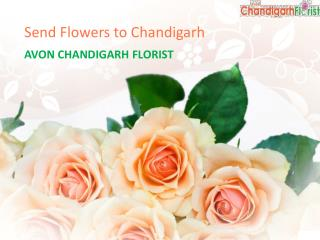 Send Flowers to Chandigarh