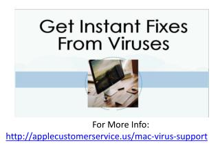Get Fixes From Viruses By Expert Technicians