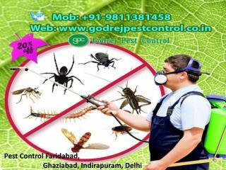 Pest Control Faridabad, Ghaziabad, Indirapuram, Delhi Call 9811381458