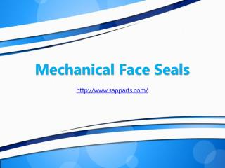 Mechanical Face Seals