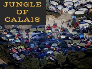 The jungle of Calais