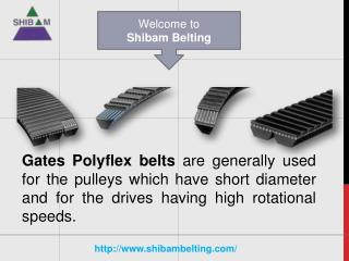 Gates Polyflex Belts Convey High Measure of Burden