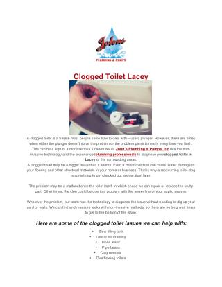 Clogged Toilet Lacey