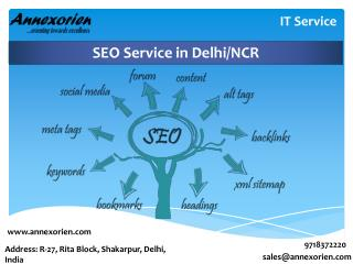SEO Service at Annexorien Technology in Delhi/NCR