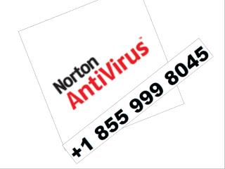 PIN | 800 570 1233 NORTON ANTIVIRUS TECHNICAL SUPPORT TELEPHONE NUMBER