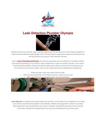 Leak Detection Plumber Olympia
