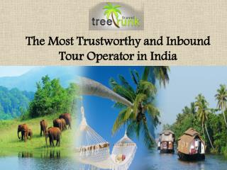 Tree Trunk Travel – The Most Trustworthy and Inbound Tour Operator in India