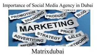 Importance of Social Media Agency in Dubai