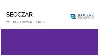 Web Development Service in NCR|Best Website Development in NCR | SEOCZAR