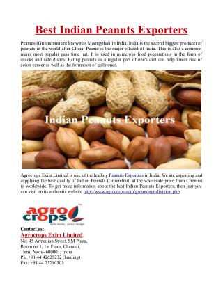 Best Indian Peanuts Exporters