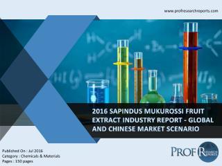 Sapindus Mukurossi Fruit Extract Industry, 2011-2021