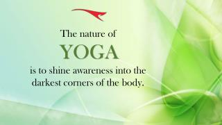 Feel Cool and Comfy with The Yoga Clothing from Alanic