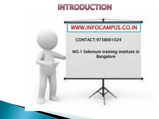 selenium training institutes in Bangalore