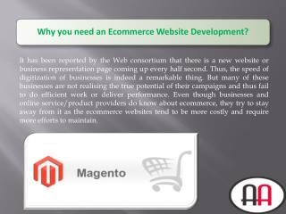 Why you need an Ecommerce Website Development?