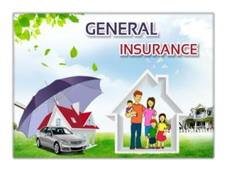 General insurance sector