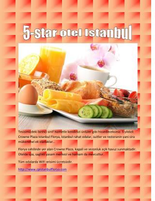 istanbul ataturk havaalani yakininda otel