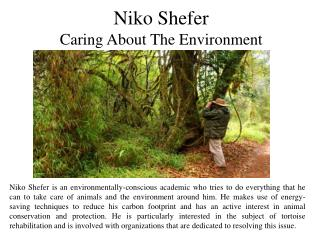 Niko Shefer - Caring About The Environment