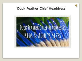 chief headdress for sale