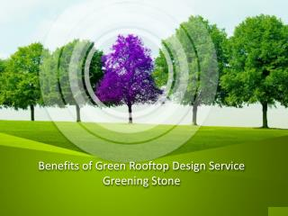 Benefits of Green Rooftop Design Service - Greening Stone