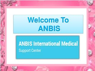 Professional kidney transplantation - ANBIS