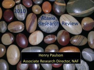Henry Paulson Associate Research Director, NAF