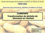 March  des Energies Renouvelables au Sahel et en Afrique de l Ouest  MERS 2006   Rencontre des producteurs, d cideurs et