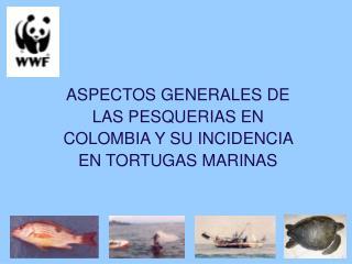 ASPECTOS GENERALES DE LAS PESQUERIAS EN COLOMBIA Y SU INCIDENCIA EN TORTUGAS MARINAS