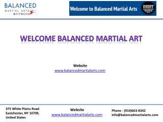 Martial arts schools pelham