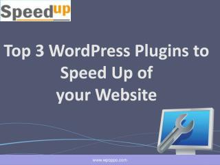 Reduce the Speed of Your Website with WordPress Plugin