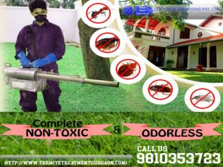The utmost odorless and non-toxic termite pest control services in Gurgaon. Call 9810353723.