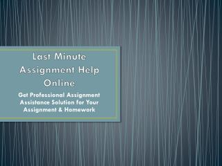 Get Last Minute Assignment Help Online Only on Myassignmenthelp.com